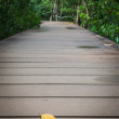A leaf on the wooden walk way — 图库照片