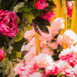 A bunch of pink flower — Stock Photo