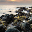 Rocky beach — Stock Photo #31606213