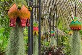 украшение сада — Стоковое фото