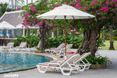 Couches with umbrellas around the pool — Stock Photo