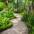 Stock Photo: Green garden in resort