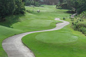 Golf course with buggy lane — Stock Photo