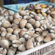 Ark shell and semussle in baskets — Stock Photo #40795509