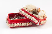 Jewelry box made from seashell — Stock Photo