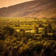 Valley in the summer haze — Stock Photo