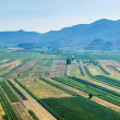 Stock Photo: Panoramic view of green valley with rich variety of crops with blue hills and sky in background.