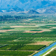 Fertile valley with crop fields — Stock Photo