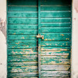 Old rustic wooden doors painted in green — Stock Photo