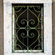 Rusty green metal window with decorative bars — Stock Photo #34036797