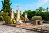 Old traditional cemetery in southern Dalmatia, Croatia — Stock Photo