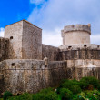 The outer walls of the old city of Dubrovnik — Stock Photo #51230567