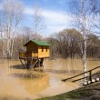 Flooding and tree house — Stock Photo