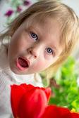 Beautiful baby of red tulips — Stock Photo