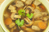 キノコのスープ — ストック写真