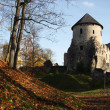 Old castle in Cesis, Latvia - Stock Photo