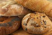 Tasty bread — Stock Photo