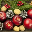 Christmas card with red apples — Stock fotografie