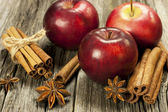 Red apples and spices — Stock Photo