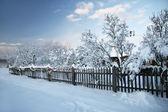 Winter Etnographic park, Riga, Latvia — Stockfoto