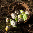 Easter eggs in wicker basket — Stock Photo