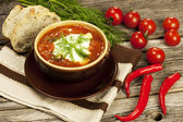 Red borscht with dill in ceramic  bowl — Stock Photo