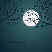 Night background with tree branches and the moon — Stock Vector