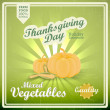 Vintage poster with fresh farm vegetables for Thanksgiving Day.  — Stock Vector