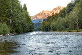 Mountain river in the morning — Stock Photo