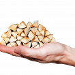 Hand carries firewood stack - Stock Photo