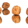 Stock Photo: Walnuts with mirroring