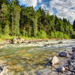 Mountain river in the sunshine — Stock Photo