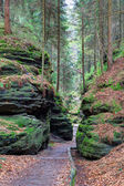 Hiking trail in the Gorge — Stock Photo