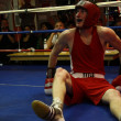 Постер, плакат: Boxer Knocked Down