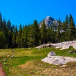 Pacific Crest Trail along Lyell fork of Tuolumne river, Yosemite — Stock Photo