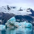 Stock Photo: Floating iceberg in Glacier Bay National Park, Alaska