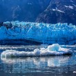 Iceberf floating in front of glacier surface in Glacier Bay Nati — Stock Photo