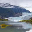 Mendenhall Glacier in Juneau, Alaska — Stock Photo #21309213