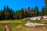 Pacific Crest Trail along Lyell fork of Tuolumne river, Yosemite — Stock Photo