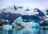 Plovoucí ledovce v národním parku glacier bay, aljaška — Stock fotografie