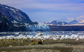 A view to Margerie and Grand Pacific glaciers from Tarr inlet in — Stock Photo