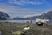 A view to Margerie and Grand Pacific glaciers with landed iceber — Stock Photo
