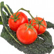 Tomatoes on vine sitting on green kale leaves — Stock Photo