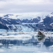 John Hopkins glacier on foggy day in Glacier Bay National park. — Stock Photo