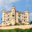 Hohenschwangau Castle — Stock Photo #22605839