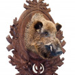 Royalty-Free Stock Photo: Stuffed wild boar head