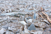 Ice floes on the river — Stock Photo