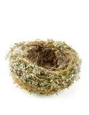 Real empty bird nest on white — Stock Photo