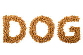 Word dog written with granules — Stock Photo