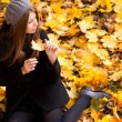 Beautiful young woman in the park autumn vibrant colors copy space — Stock Photo #21448751